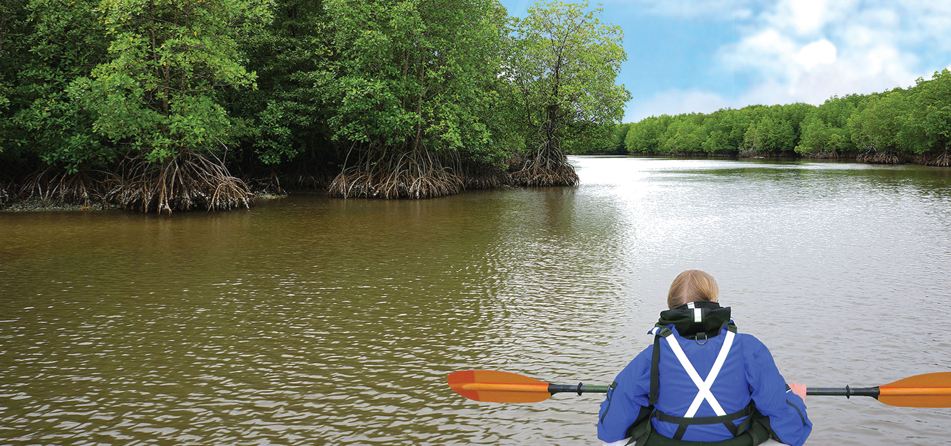 Kayak through the Mangroves in Koh Kong