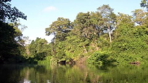 Osvay Community-Based Ecotourism Site